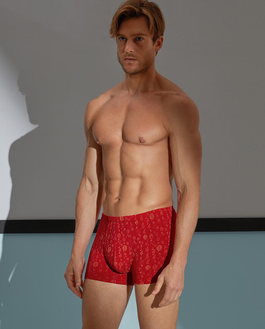 Aimer Men内裤|爱慕先生福禄千禧裤中腰平角内裤NS23A421