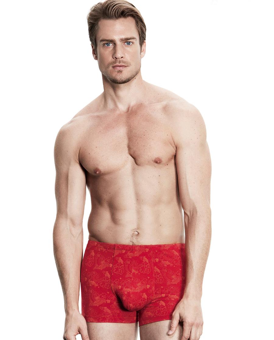 Aimer Men内裤|爱慕先生鲤福裤中腰平角内裤NS23B151