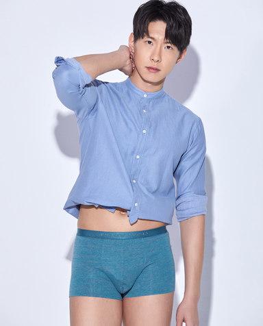 Body Wild内裤|宝迪威德静谧装腰平角裤ZBN23GC3
