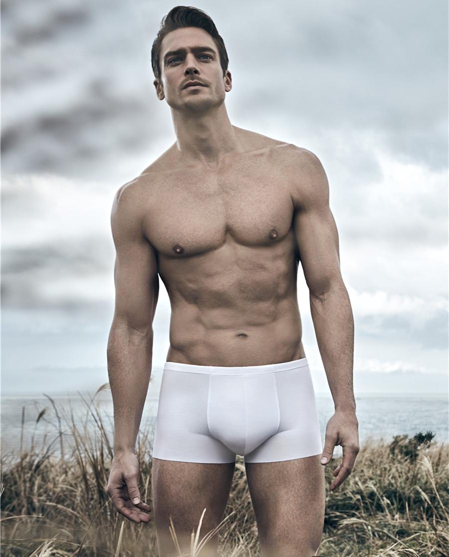 Aimer Men内裤 爱慕先生1号裤平角内裤NS23V81