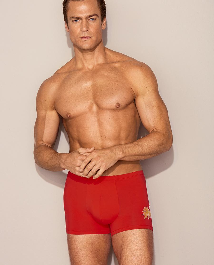 Aimer Men内裤|爱慕先生20AW金标生肖裤包腰平角裤NS