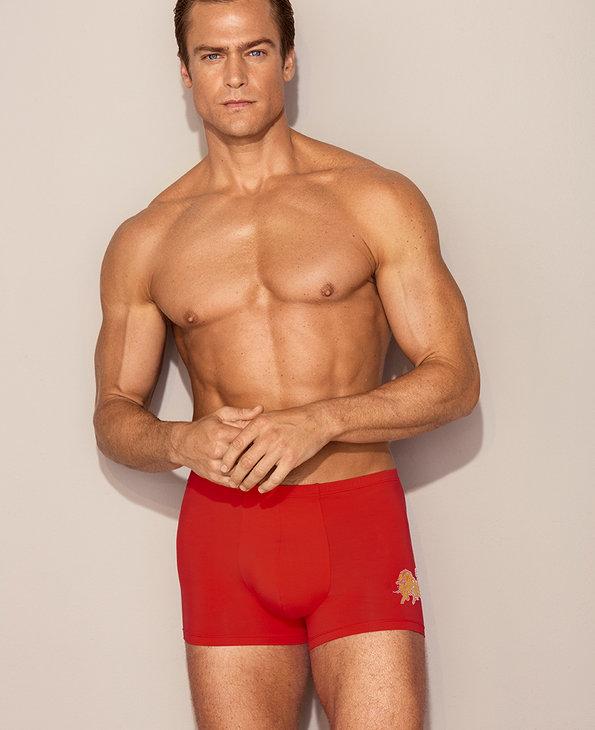 Aimer Men内裤|爱慕先生金标生肖裤包腰平角裤NS23D381